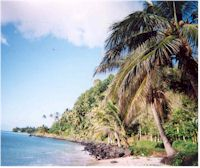 image of Samoan beach